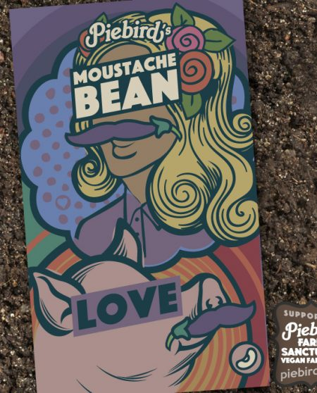 Moustache Bean - heirloom seeds