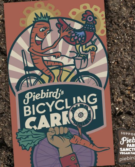 Bicycling Carrot - Heirloom Seeds