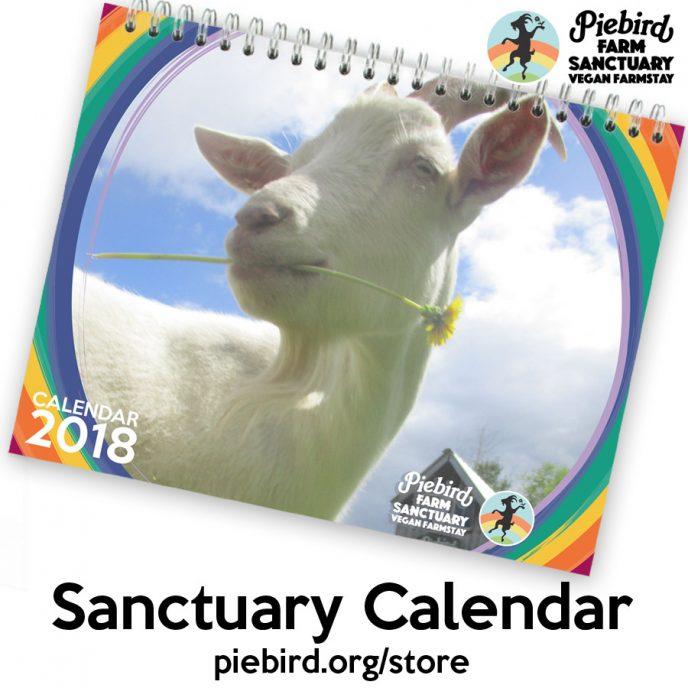 sanctuary calendar 2018