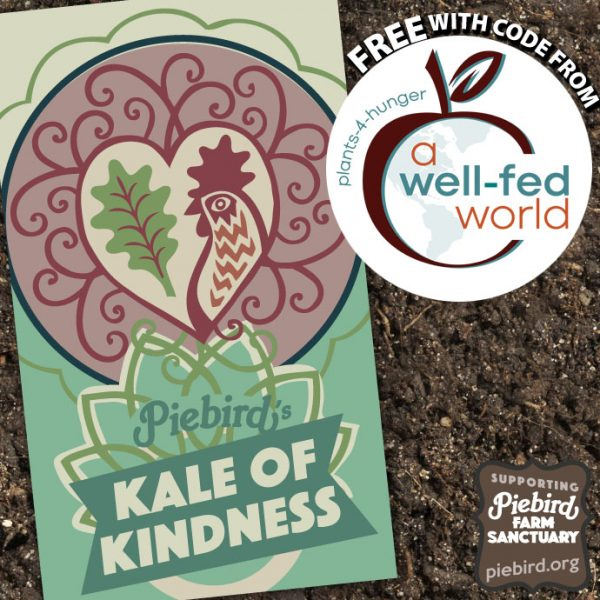 Kale seeds - heirloom